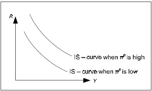 The IS curve and expected inflation