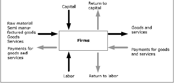 Firms in the circular flow