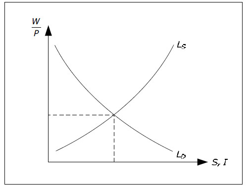 Determination of W, P, Y and L