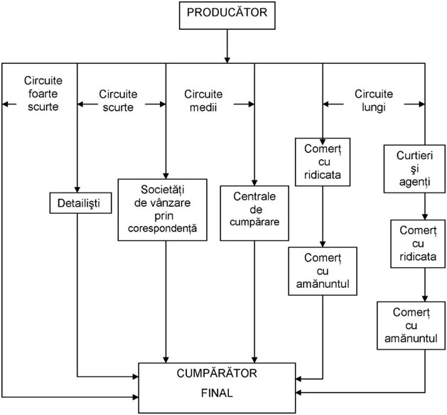 Structura circuitelor de distribuţie